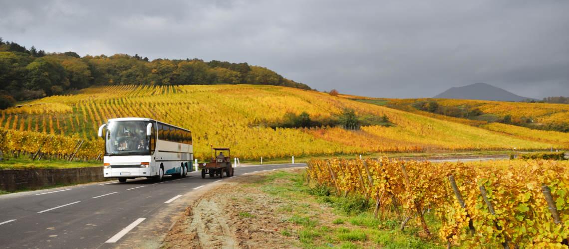 Vnitrostátní autobusová doprava